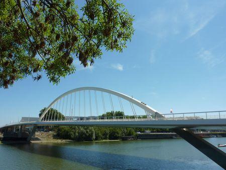 Pont_Confluences_15