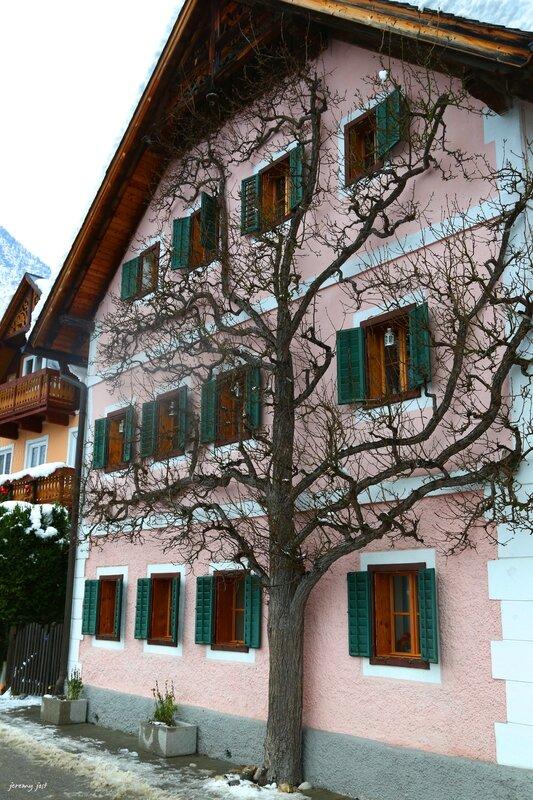 arbre généalogique autrichien