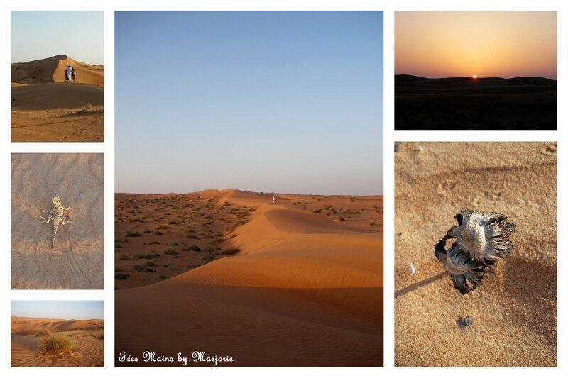 Sultanat d'Oman22