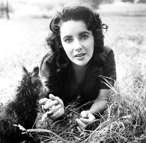 1956-liz_taylor_by_peter_basch-1