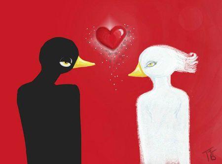 corbeau et la collombe2