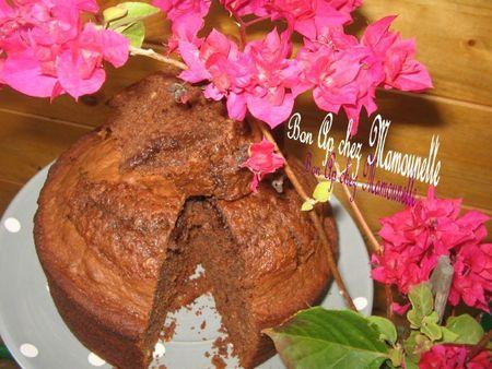 Gâteau moelleux chocolaté 012