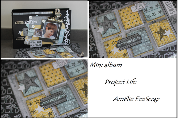 visuel mini album project life sains