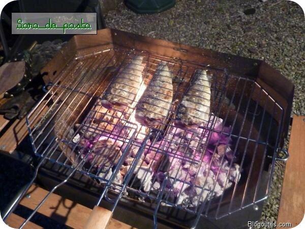 Truites saumonées pêchées dans les ardennes Belge.