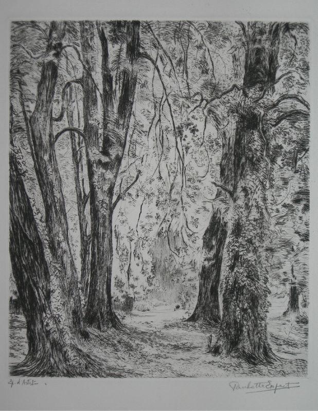 L 39 arbre 2 me partie 4 xixe xxie si cles estampe d for Christiane heyn