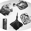 Drôle de faune aux reflets métalliques