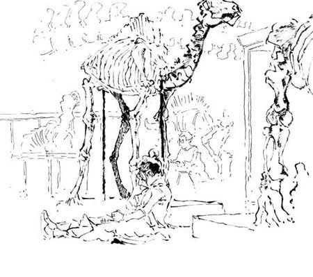 zoologie1