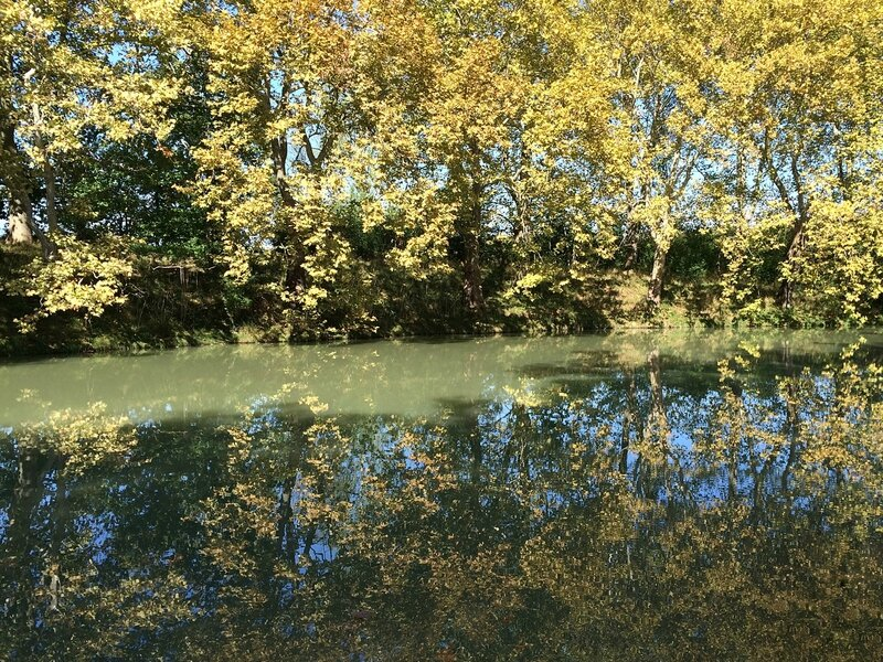 Reflets canal