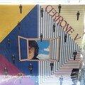 vinyls 33tours (78)