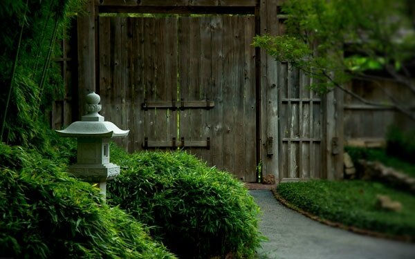 green_and_wooden_garden_wallpaper-1440x900