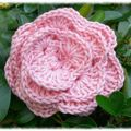 rose_crochet_bis_m