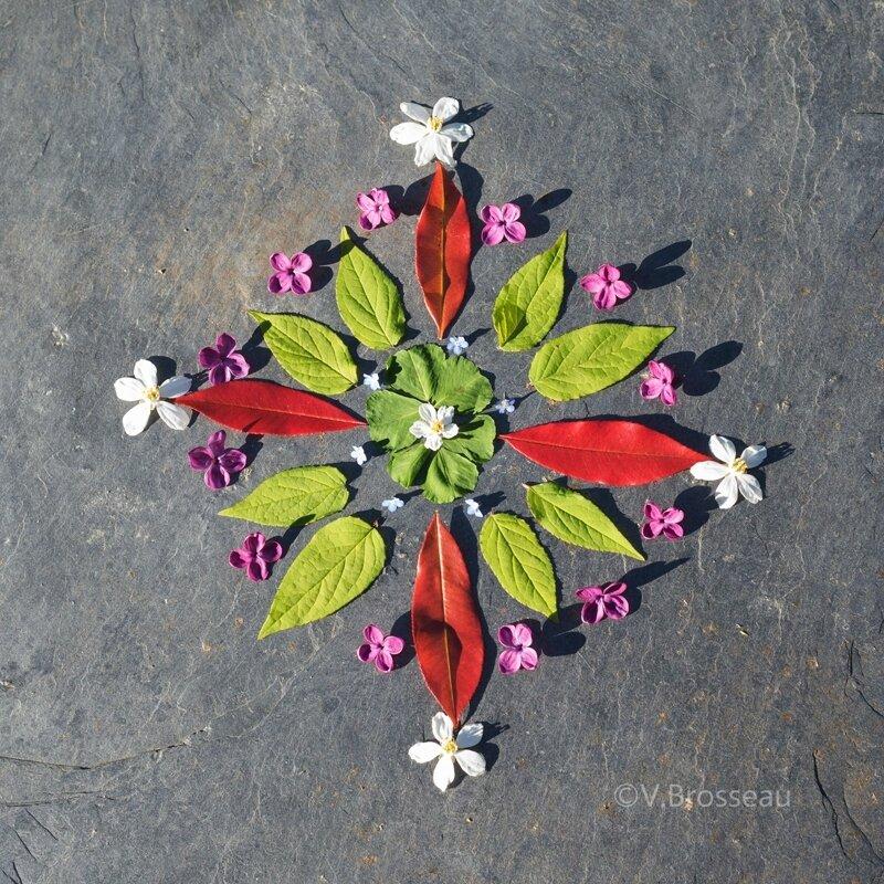 mandala-fleur-feuille17-03