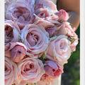 Création florale - Lily Griffiths