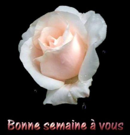 BONNE_SEMAINE_A_VOUS