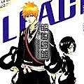 Bleach + yaoi