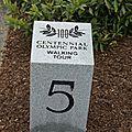 Centennial Olympic Park Downtown (13).JPG