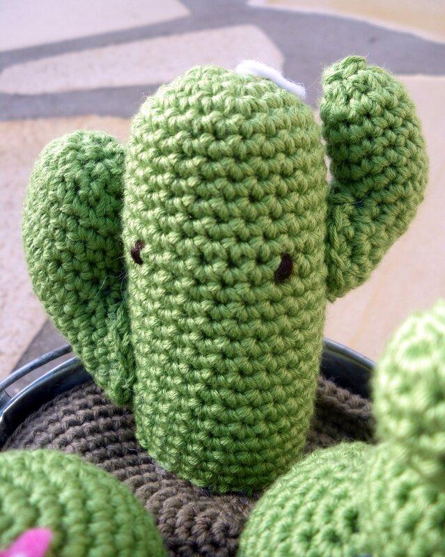 Cactus crochet (6)