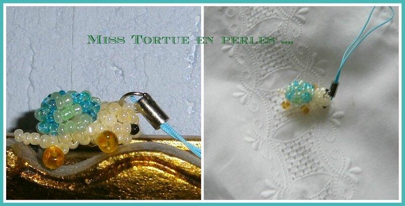 4 Miss Tortue