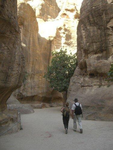 Petra, descente vers le site archeologique
