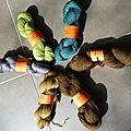 Les laines du scarabée