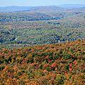 Le mont-chauve, les feuilles, l'automne