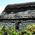 Le Burren / Irlande *Isabelle Didier