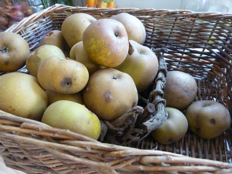 8-pommes