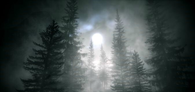 alan-wake,-foret-sombre,-nuit,-lune-188941