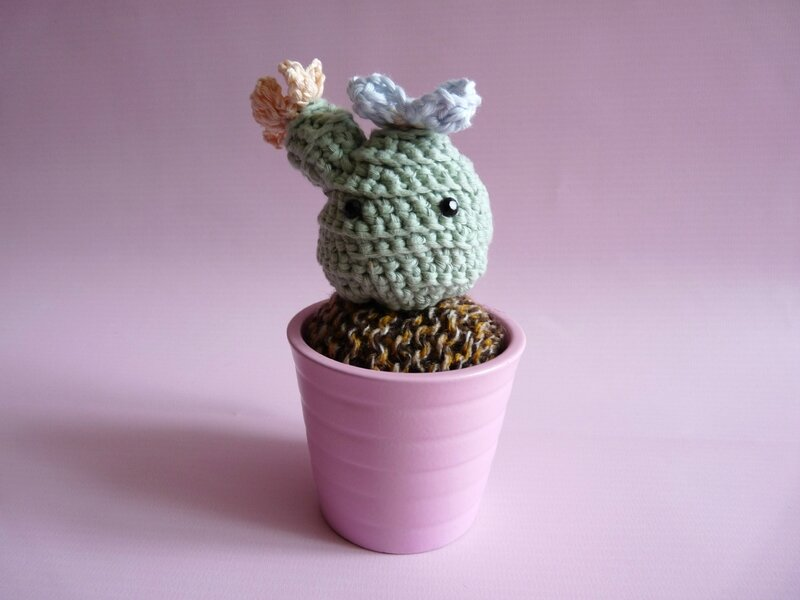 amigurumi cactus02