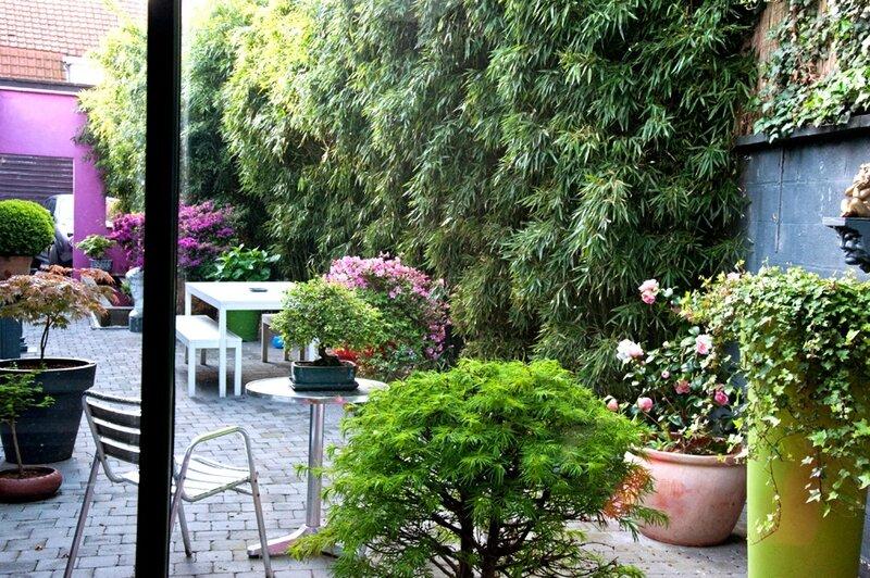 pnew jardin