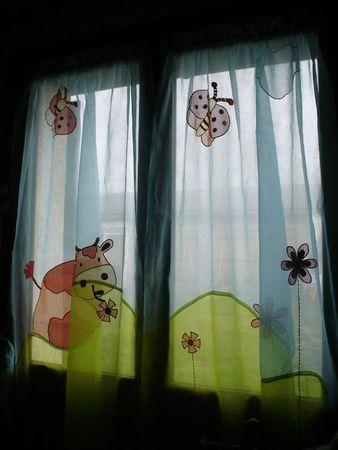 rideaux et chatons 003