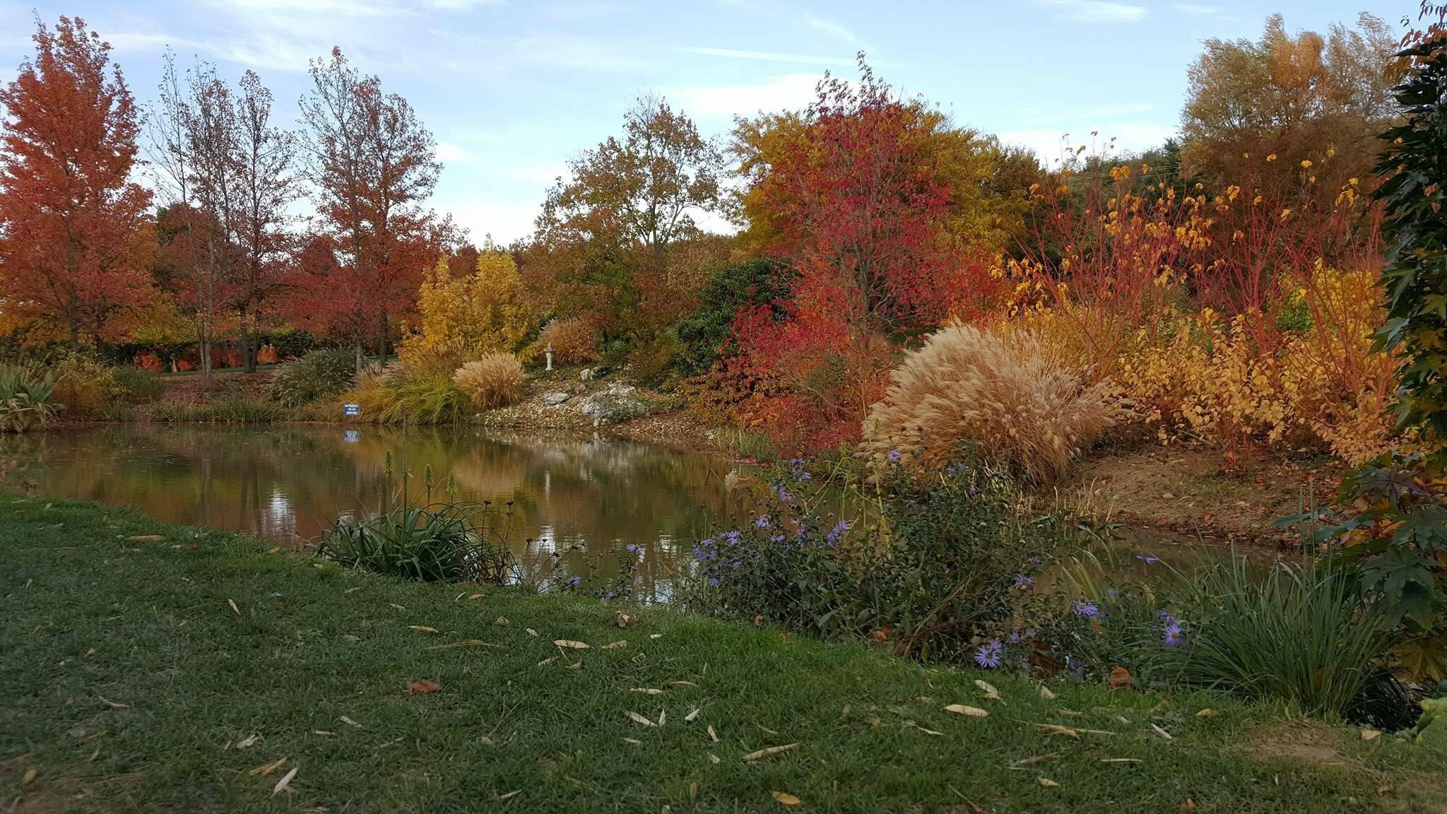 Le jardin du bois marquis de vernioz dans l 39 isere for Jardin octobre 2015