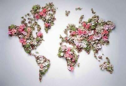 monde-de-paix
