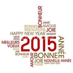 bonne-annee-20151