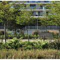 Parc de Billancourt 32