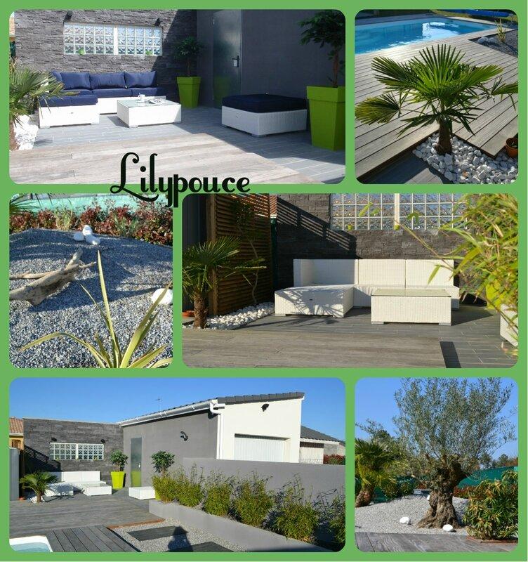 Piscine zen chez lilypouce for Jardin palmier galet