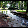 2008-07-20 - WE 16 - Longwood Gardens 051