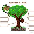 Windows-Live-Writer/Projet-Mon-ami-larbre_90D5/image_18