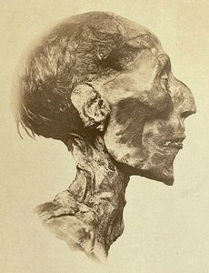 459px-Ramses_II_-_The_mummy