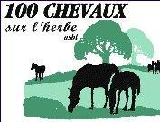 100_chevaux_sur_l_herbe