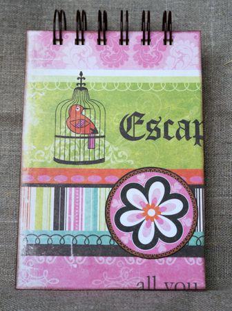 Carnet_cage_oiseau