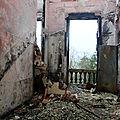 Ambiance chateau abandonné_7810