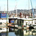 Sausalito :: 1 ::