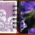 Mini-album couleurs 15