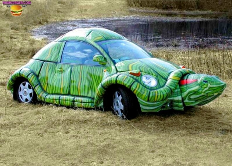 Tuning tortue