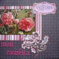 mon camélia 1