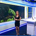 celinepitelet02.2015_05_13_premiereeditionBFMTV