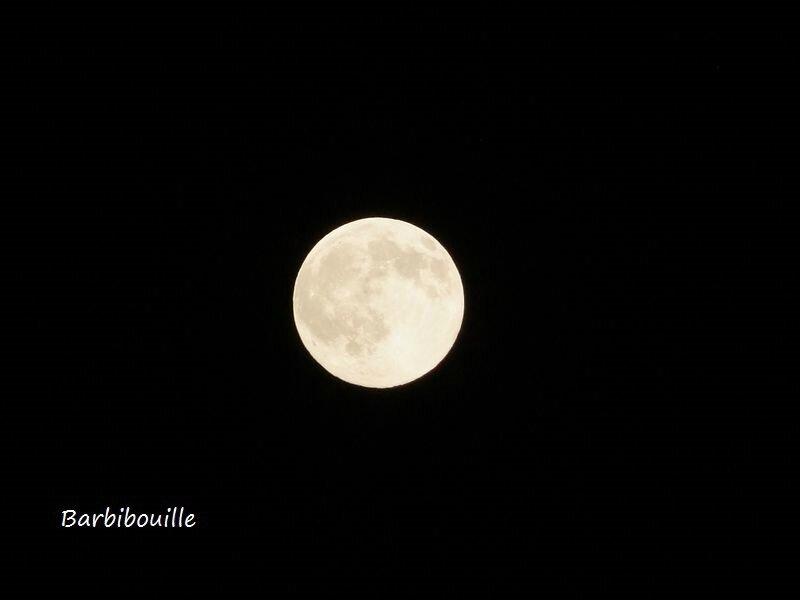 lune01 juillet15