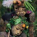 tribus omo12