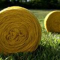 teinture végétale, jaune moutarde vif sur mérinos